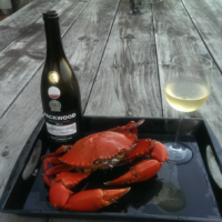 fresh-crab-and-sauv-blanc