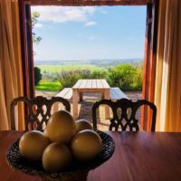 Views from the dining room across the estate