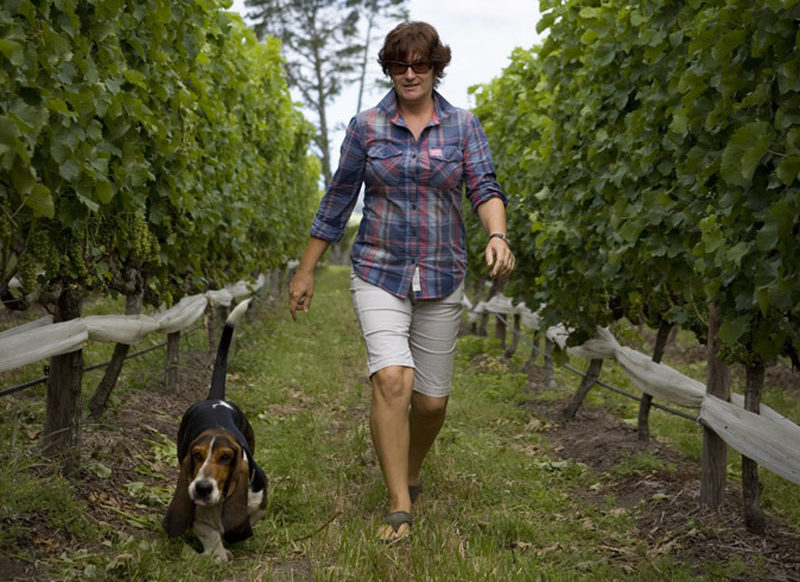 Our Winemaker - Vicky Gent