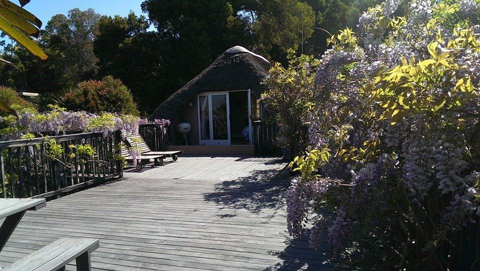 The deck at Bottlebrush cottage at Packwood wine estate accommodation