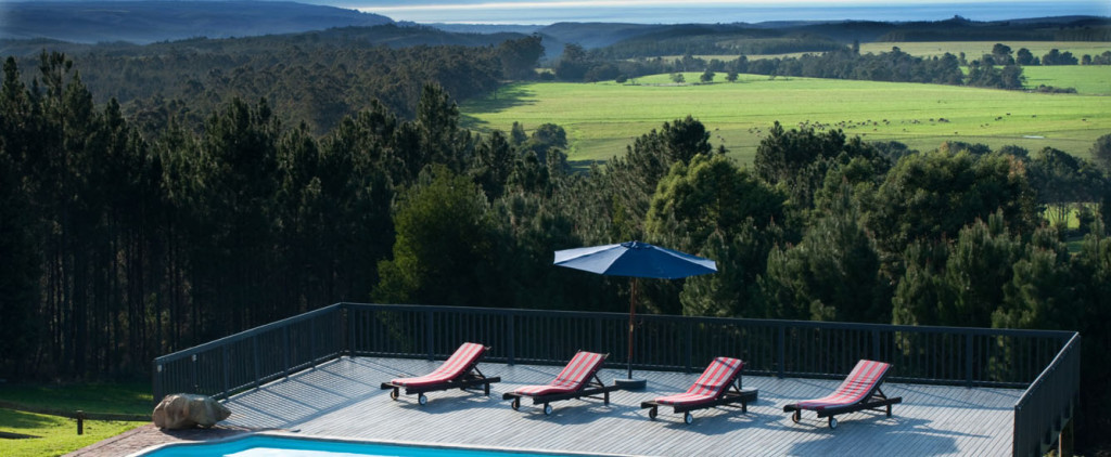 Packwood Wine Estate on the Plettenberg Bay Wine Route