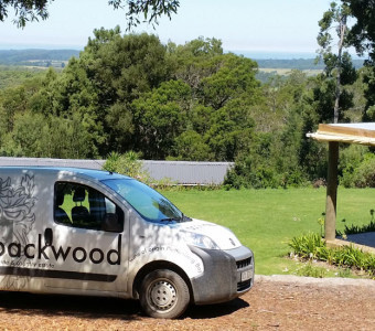 Packwwod vehicle