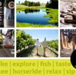 Things to do & holiday activity ideas at Packwood, Walking trails, hiking trails, MTB trails and wine tasting all under one roof